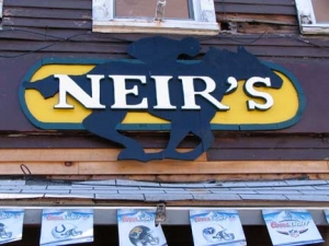 33a-neirs_