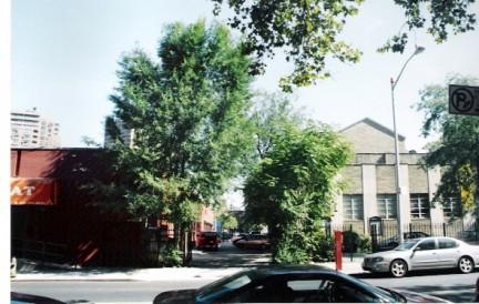 Scammel Street