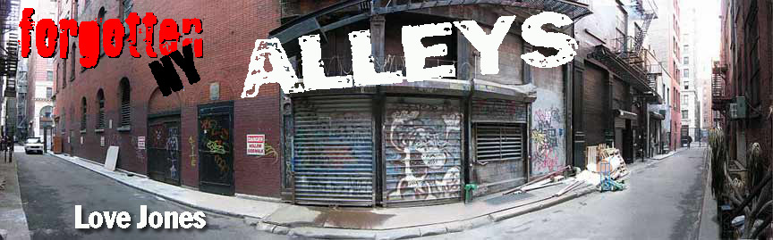 alleys_love jones_16
