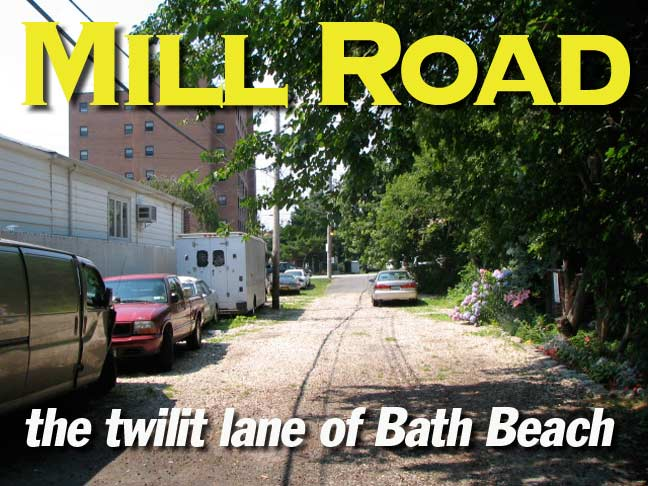 grist mill bungalow mill road twilit lane of bath beach forgotten new york