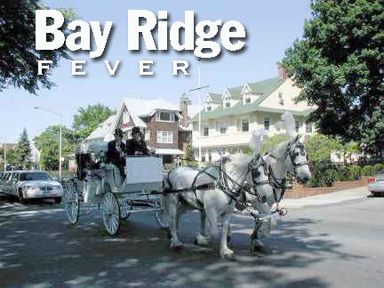 bayridgehorsescover