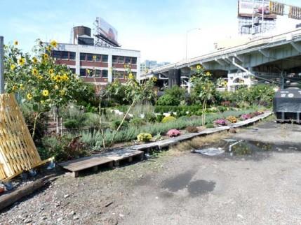 12.51av.garden
