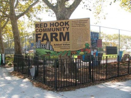 29.redhook.farm