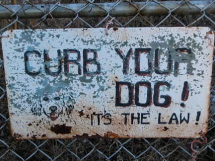 doone.curbdog