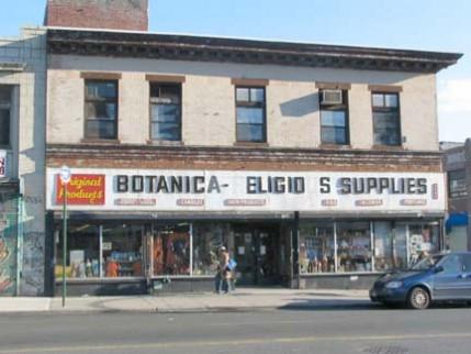 05.botanica