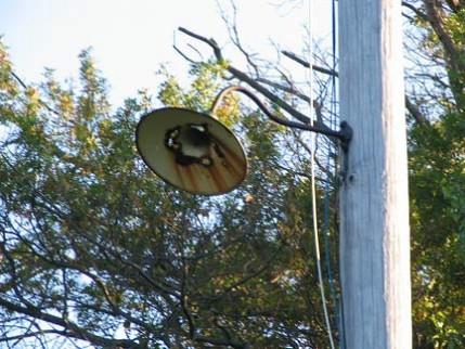 04.lamp