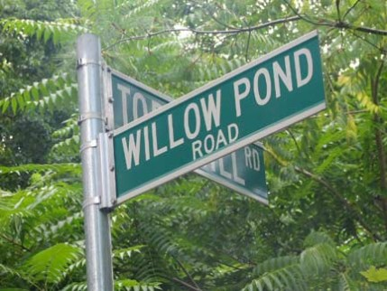 28.willowpond1