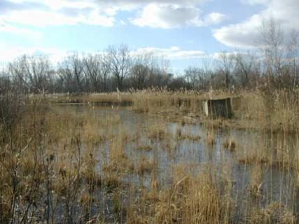 simarinersmonumentswamp