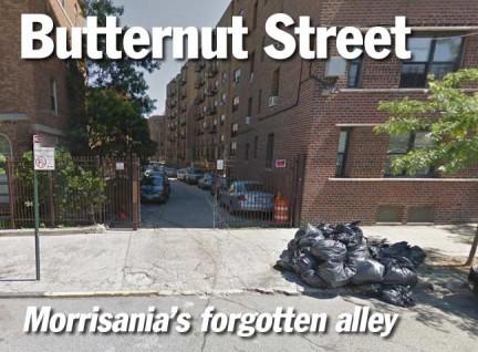 title.butternut