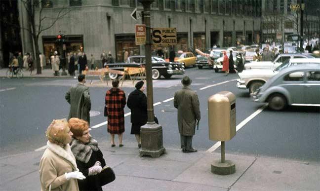 shelter.1965